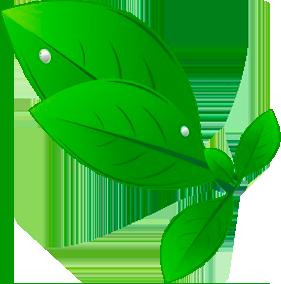 Ícone da Ouro verde